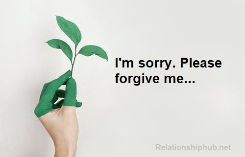how to ask for forgiveness over text